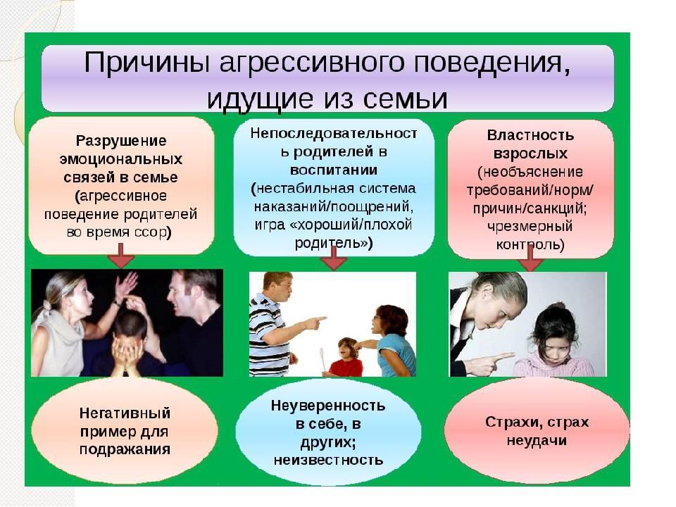 4 тревожных сигнала: как отличить проблемы развития от плохого воспитания ребенка - иркутская городская детская поликлиника №5