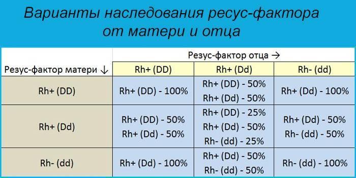 Группы крови: наследование, таблица наследственности