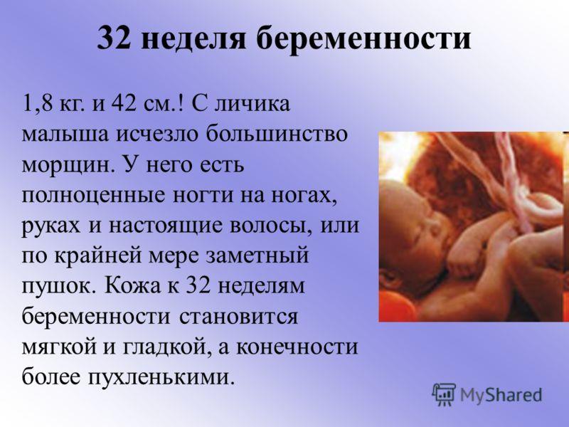 24 неделя беременности. календарь беременности     материнство - беременность, роды, питание, воспитание