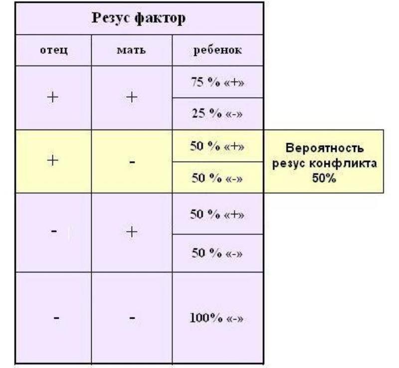 Резус-конфликт: проблема и решение. отрицательный резус фактор при беременности, антитела при резус конфликте