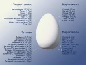 Можно ли кормящей маме кушать яйца? | уроки для мам