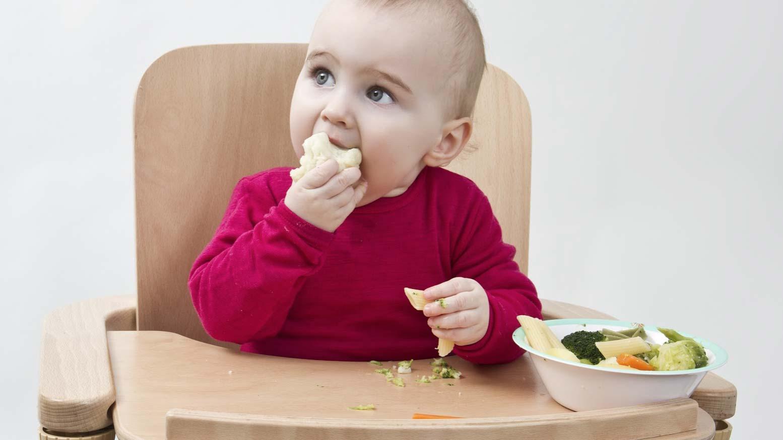 Как научить ребенка жевать твердую пищу: способы и советы доктора комаровского