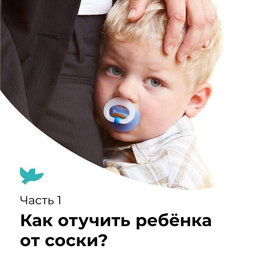 Как отучить ребенка от рук: грудного, от года, методики