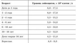 Причины повышенных лейкоцитов в моче у ребенка, нормы