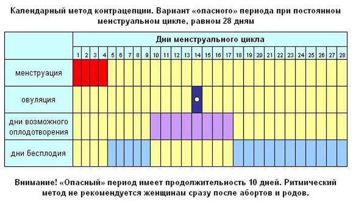 Как считать недели беременности? как правильно подсчитать срок беременности в днях и неделях? акушерский подсчет и с даты зачатия
