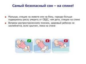 Можно ли новорожденному спать на животе у мамы, при коликах, ночью, после кормления: комаровский