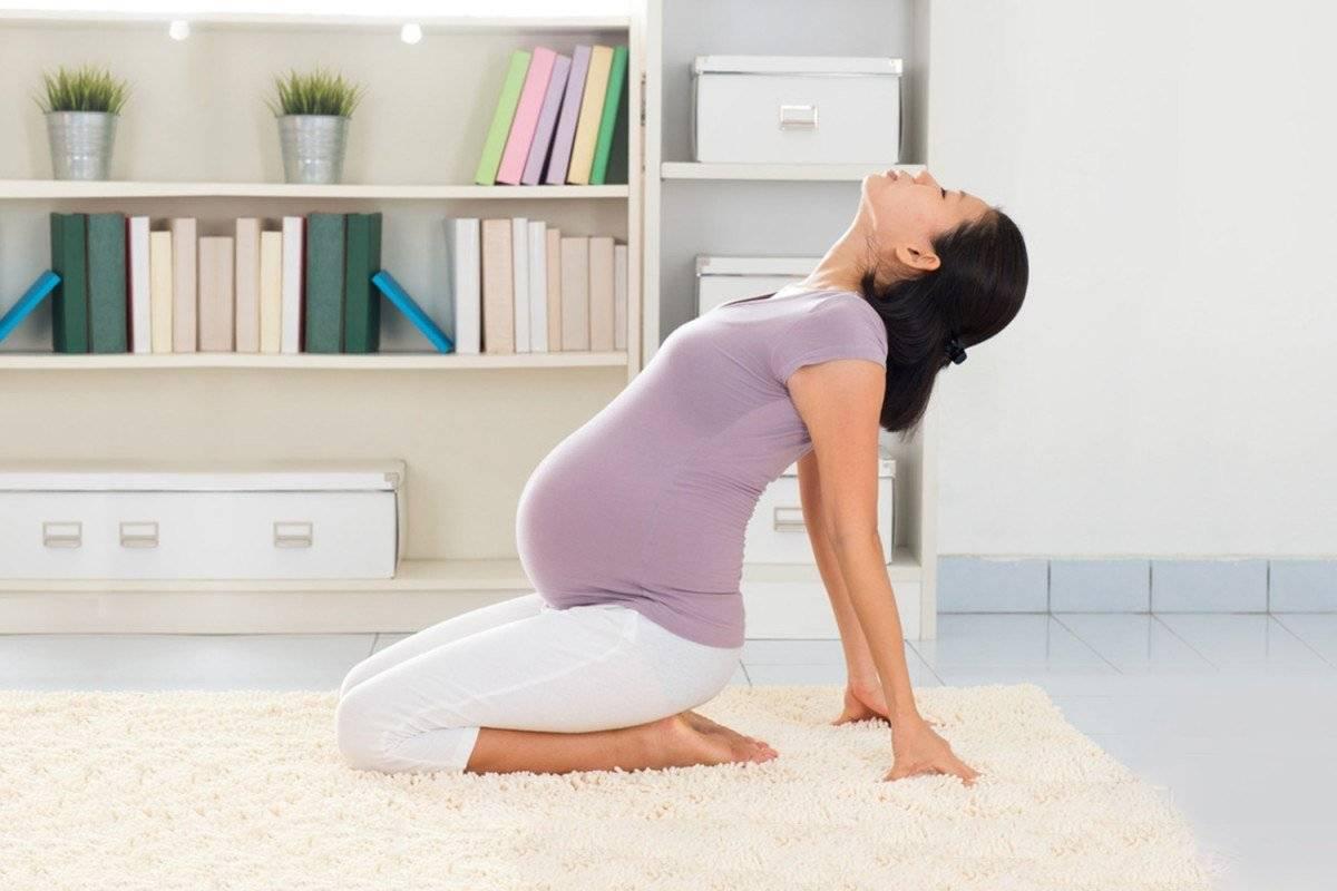 Йога для беременных: какие упражнения будут полезны на 1, 2 и 3 триместре, видеоуроки онлайн для начинающих