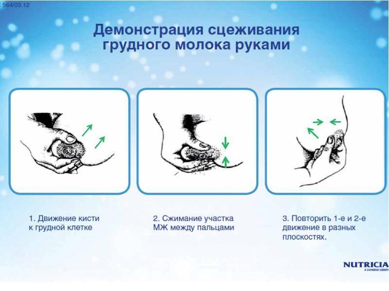 Как сцеживать грудное молоко руками | уроки для мам