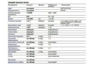 Общий анализ крови при беременности: норма в таблице и расшифровка показателей