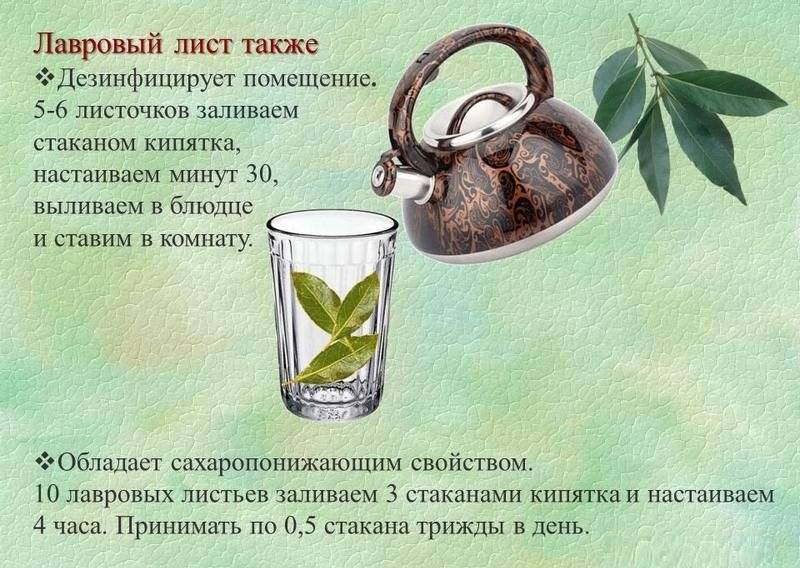Отвар лаврового листа для выкидыша рецепт отзывы и сколько - healingcraft.ru