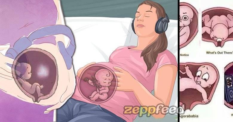 Как защищен ребенок в утробе матери. страхи беременных: можно ли навредить ребенку в утробе? советы экспертов. кислород для младенца