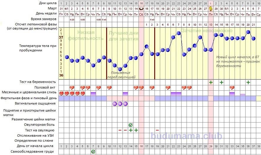 Какая температура должна быть при беременности