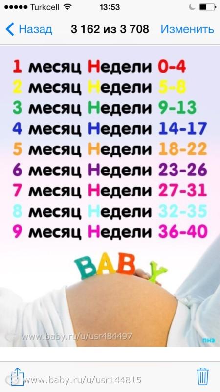 Календарь беременности. беременность по неделям – этапы