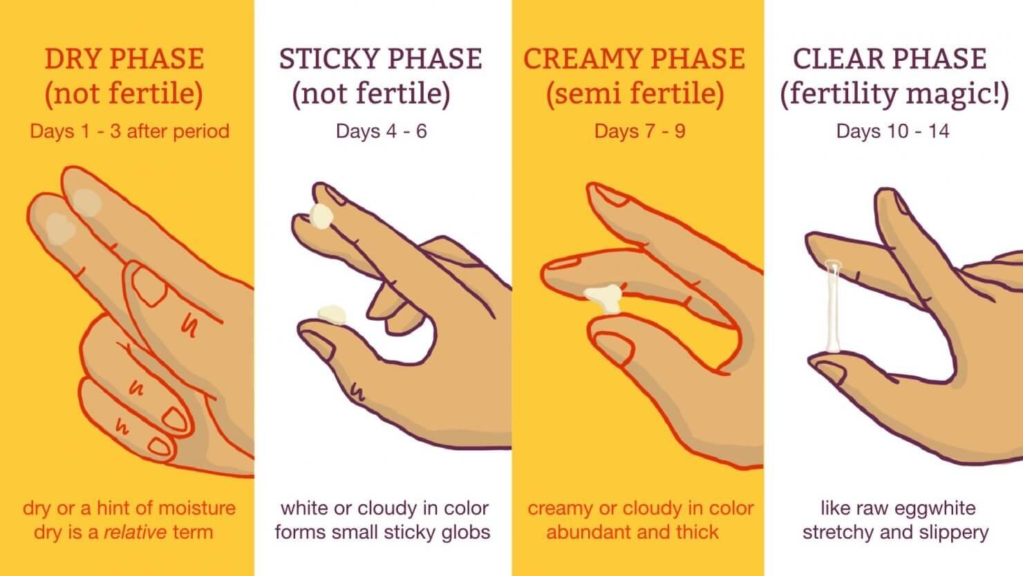 Когда и какие появляются выделения после зачатия?