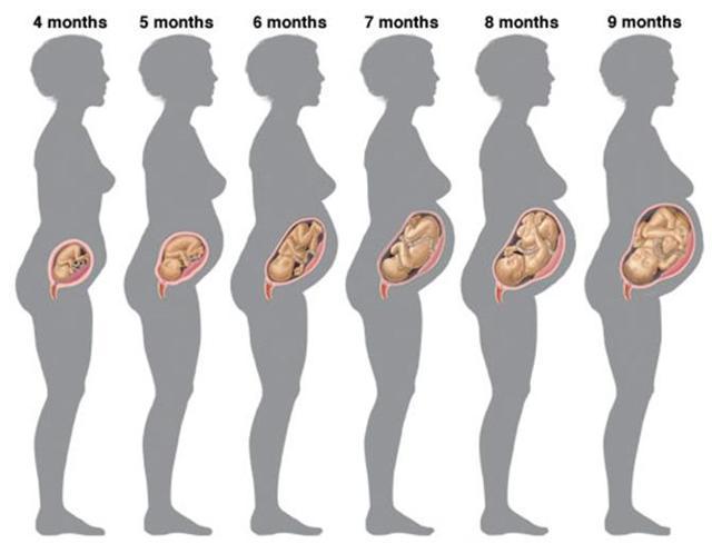 1 неделя беременности (23 фото): симптомы и ощущения, признаки и что происходит, можно ли определить беременность