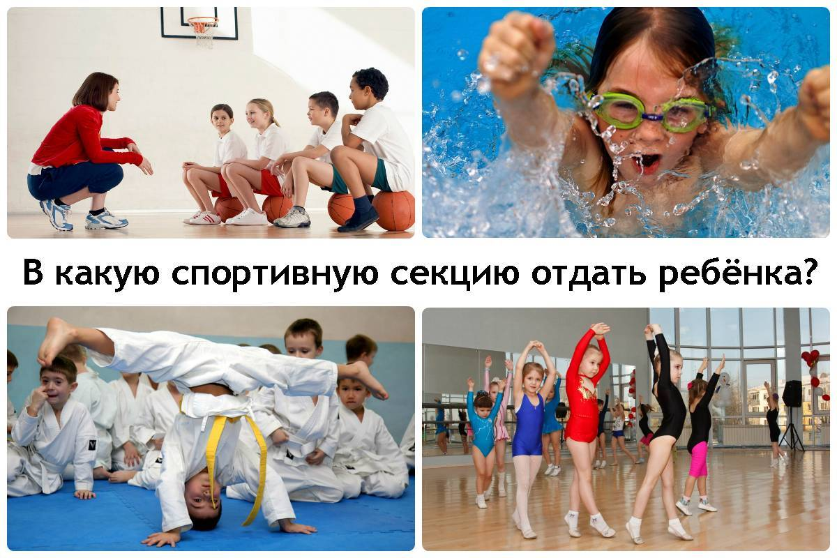 Выбираем вид спорта для ребёнка, учитывая его характер, телосложение, темперамент и состояние здоровья