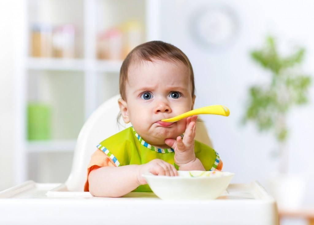 Первый прикорм - почему вводить раньше срока опасно?
