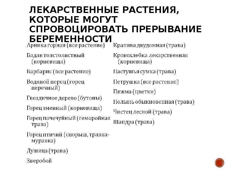 Как пить душицу чтобы вызвать выкидыш - pratolina.ru