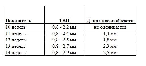 Толщина воротникового пространства в 12 недель: норма, таблица, отклонения