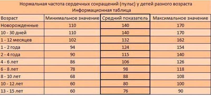 Пульс человека: норма по возрасту в таблице для взрослых