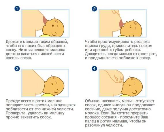 Позы для кормления новорожденных         уроки для мам