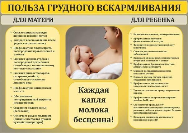 Смешанное вскармливание новорожденных: плюсы и минусы | плюсы и минусы