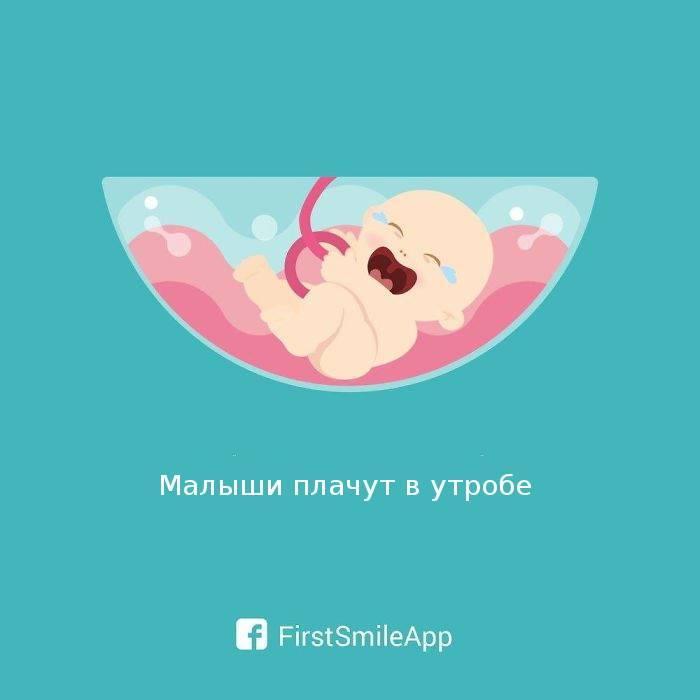 17 мифов и фактов о зачатии ребенка