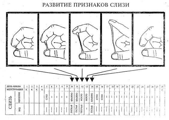 Выделения после овуляции – белые, желтые, коричневые, кровянистые. какие выделения после овуляции, если зачатие произошло, если зачатие не произошло
