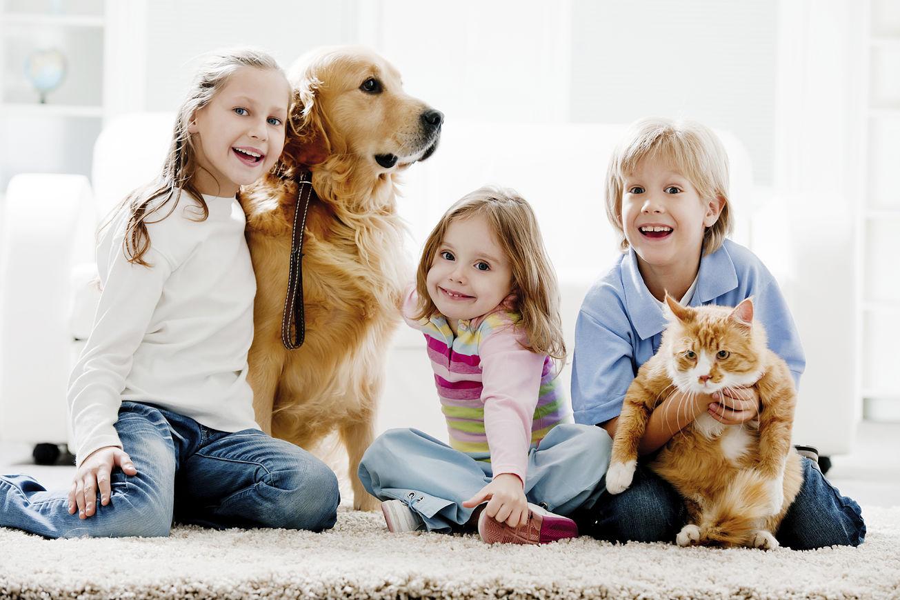 Влияние домашних животных на развитие ребенка