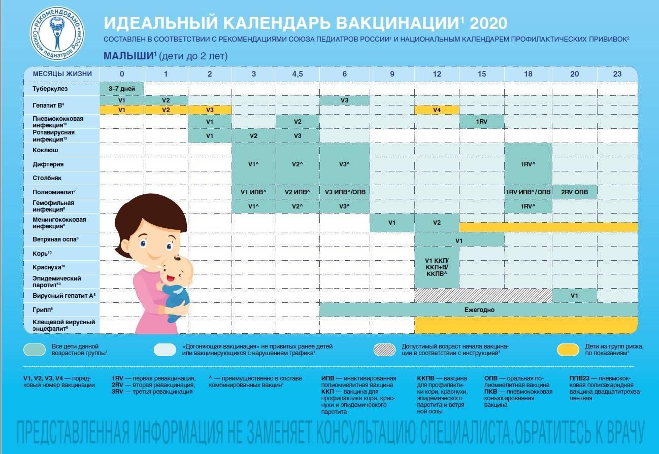 Календарь прививок детям в россии
