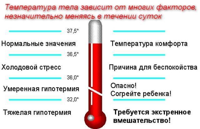 Какая температура должна быть у месячного ребенка или какая температура тела у грудничков считается нормальной • твоя семья - информационный семейный портал