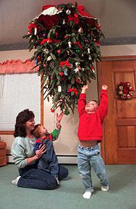 Какого числа наряжать елку дома: когда в ноябре, декабре, приметы