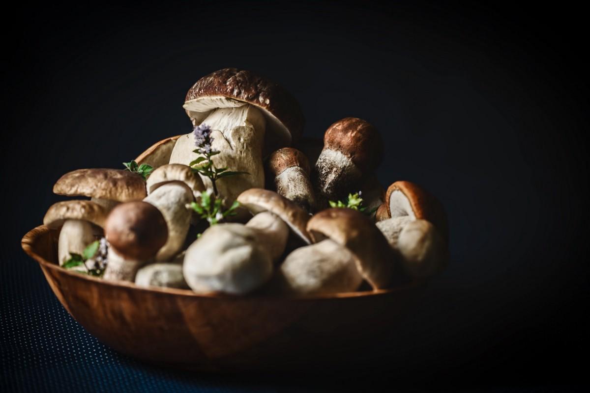 Со скольки лет можно есть грибы детям? можно ли детям давать кушать белые грибы, шампиньоны, вешенки, лисички, сморчки, жареные грибы?