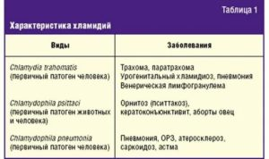 Вульвовагинит у девочки: признаки и лечение / mama66.ru