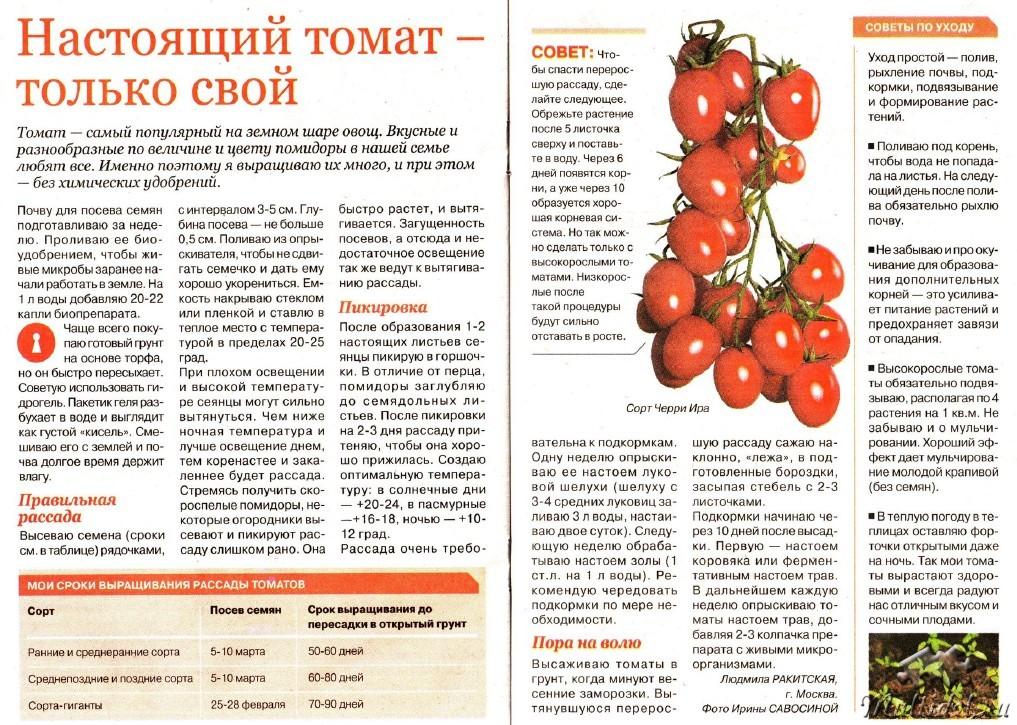 С какого возраста можно давать ребенку помидоры?