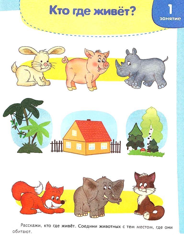 Развитие речи у детей 2-3 лет: нормы, упражнения для развития речи