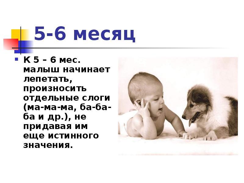 В каком возрасте в норме ребенок начинает говорить первые слова?