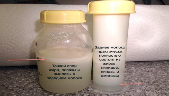 Анализ на золотистый стафилококк из носа и зева, крови, мочи, кала, грудного молока
