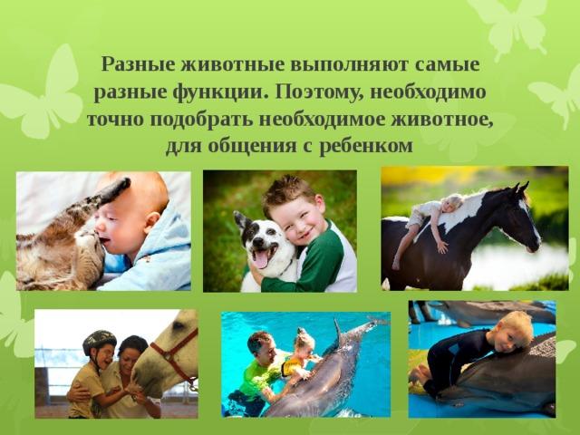 Польза домашних животных для детей