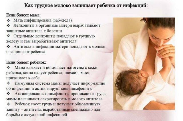 Можно ли кормящей маме сгущенку: особенности употребления сгущенного молока при грудном вскармливании
