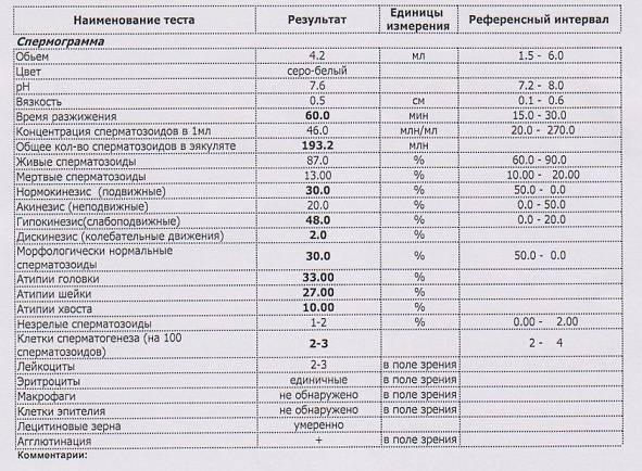 Эритроциты, лецитиновые зерна и эпителиальные клетки в спермограмме - проздоровье