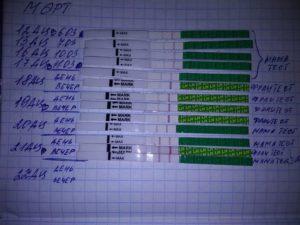 Тест на овуляцию (35 фото): как правильно делать – инструкция по применению. что это такое, как работает тест для определения овуляции и сколько стоит, как им пользоваться и что он показывает?