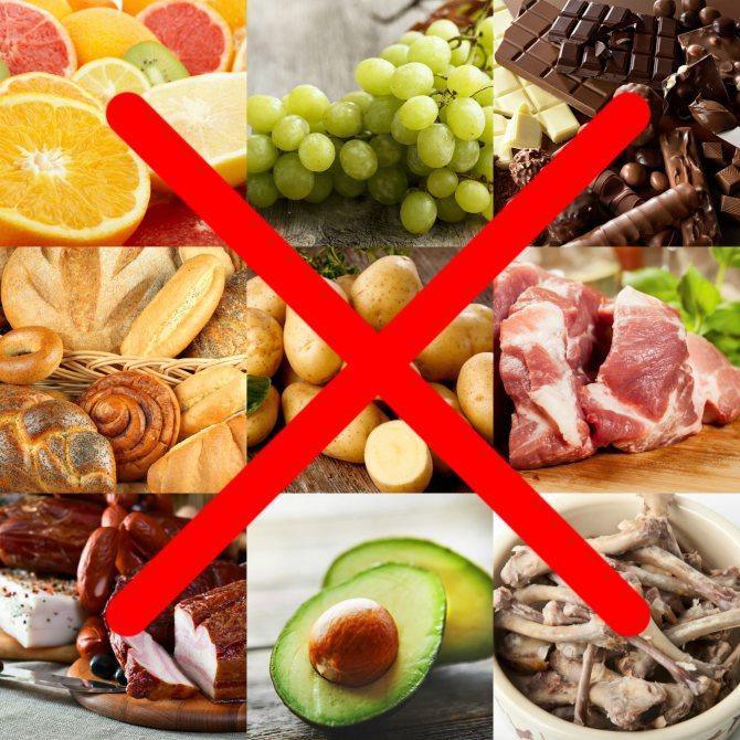 Что нельзя ребенку до года: запрещенные продукты питания