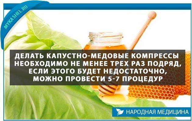 Лучшие рецепты из капустного листа и меда для борьбы с кашлем