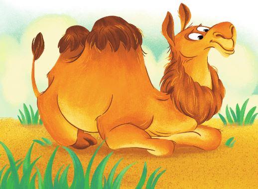 Зачем верблюду горбы. как объяснить ребенку 3-5 лет зачем верблюду горбы | интересные факты