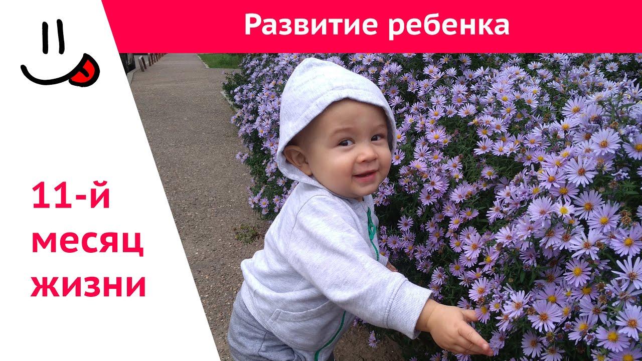 Развитие ребенка в 11 месяцев: что должны уметь девочки и мальчики на 11 месяце жизни / mama66.ru
