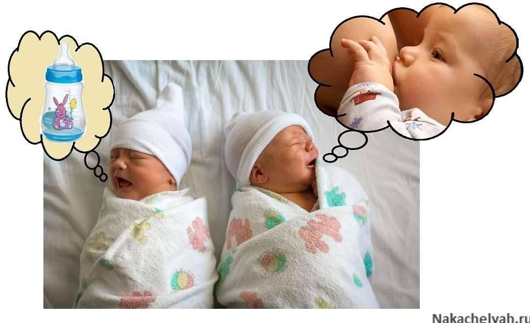 Советы по грудному вскармливанию двойни: кормление грудью двойняшек одновременно