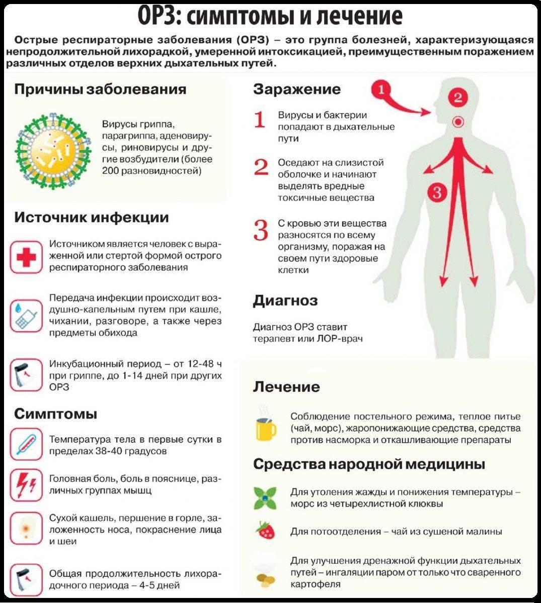Простуда у ребенка: чем лечить и что давать при первых признаках