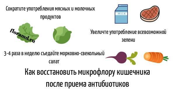 Антибиотики и дети. как восстановить иммунитет после курса антибиотиков? | здоровье детей