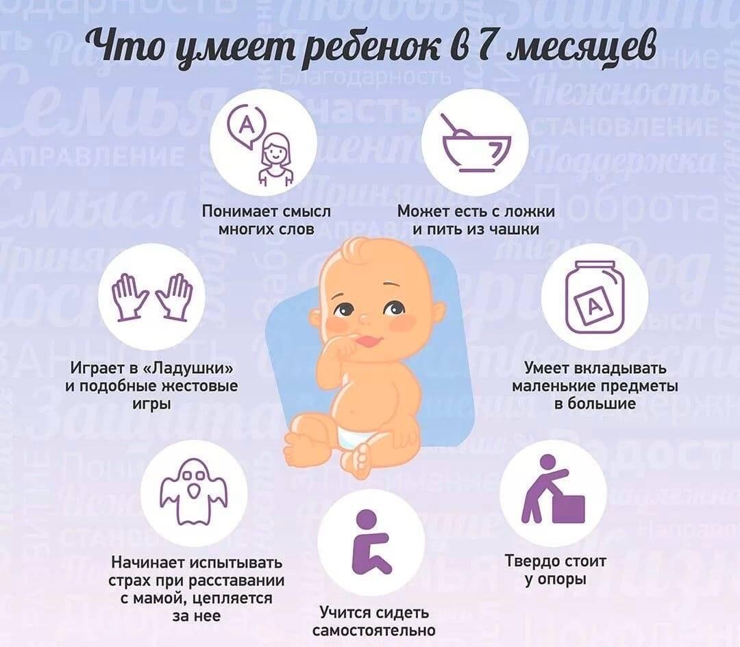 Развитие ребенка в 7 месяцев: что должен уметь, рост, вес и уход